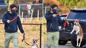 Zach Braff's Dog Jumps for Joy at Prospect of Playing Fetch