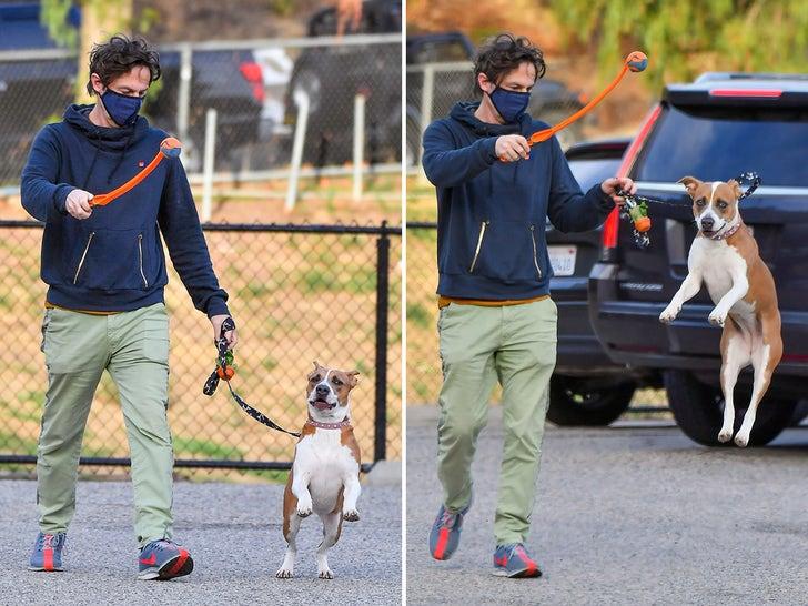 Zach Braff -- A Walk In The Dog Park