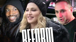 Madonna Joins Reform Alliance, Donating PPE to Jails, Prisons