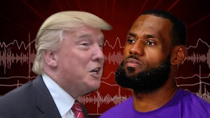 Donald Trump Rips 'Nasty' LeBron James, 'He's a Hater'