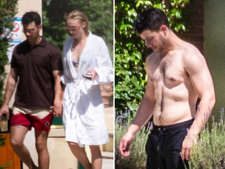 Jonas Brothers and Sophie Turner Taking The Plunge in France