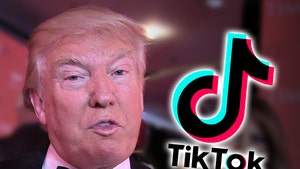TikTok Stars Believe Trump Wants to Ban App as Revenge for Trolling Him