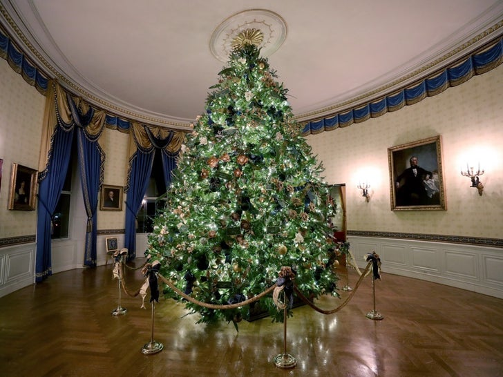 The 2019 White House Holiday Decorations