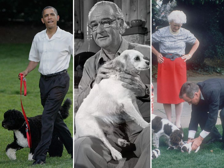 Presidential Pooches -- Through the Years