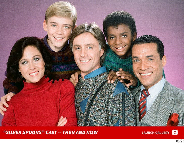 """""""Silver Spoons"""" Cast -- Then and Now"""