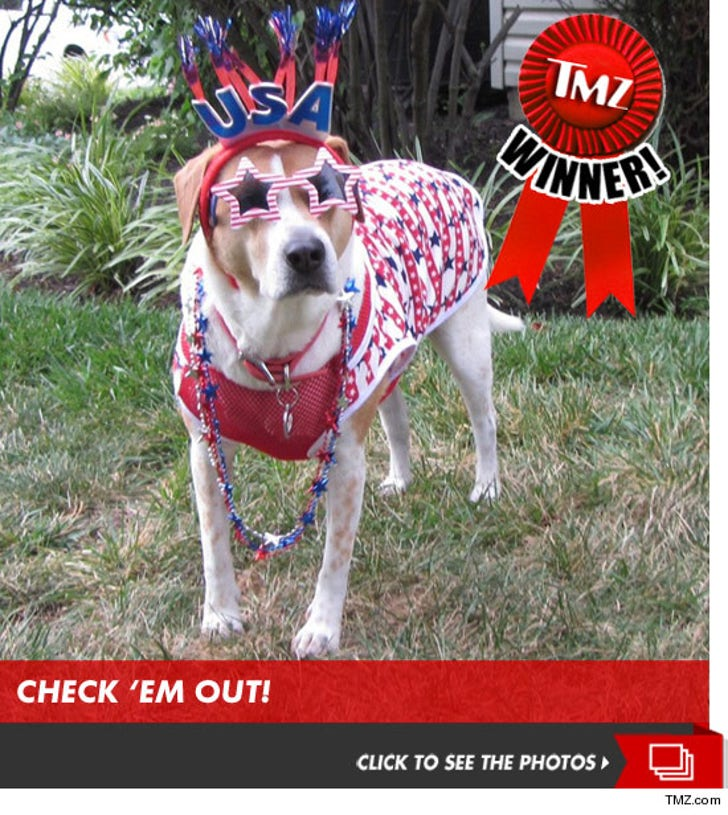 TMZ's Team USA Olympic Fever Photo Contest!