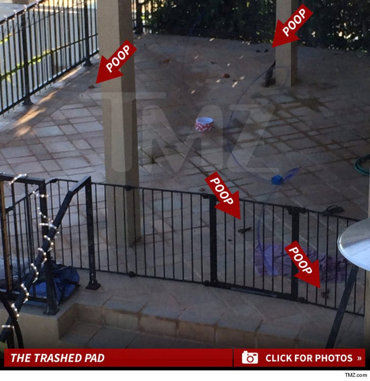 Wiz Khalifa -- Amber Rose Has Our Son Living in Filth ... Here's Proof (PHOTOS)