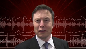 Elon Musk Drops SoundCloud Rap Song About Harambe