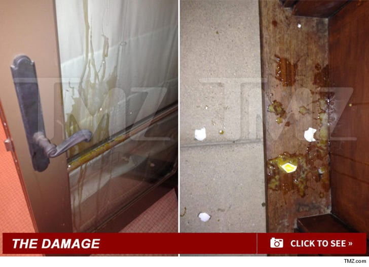 Justin Bieber's Egging Damage
