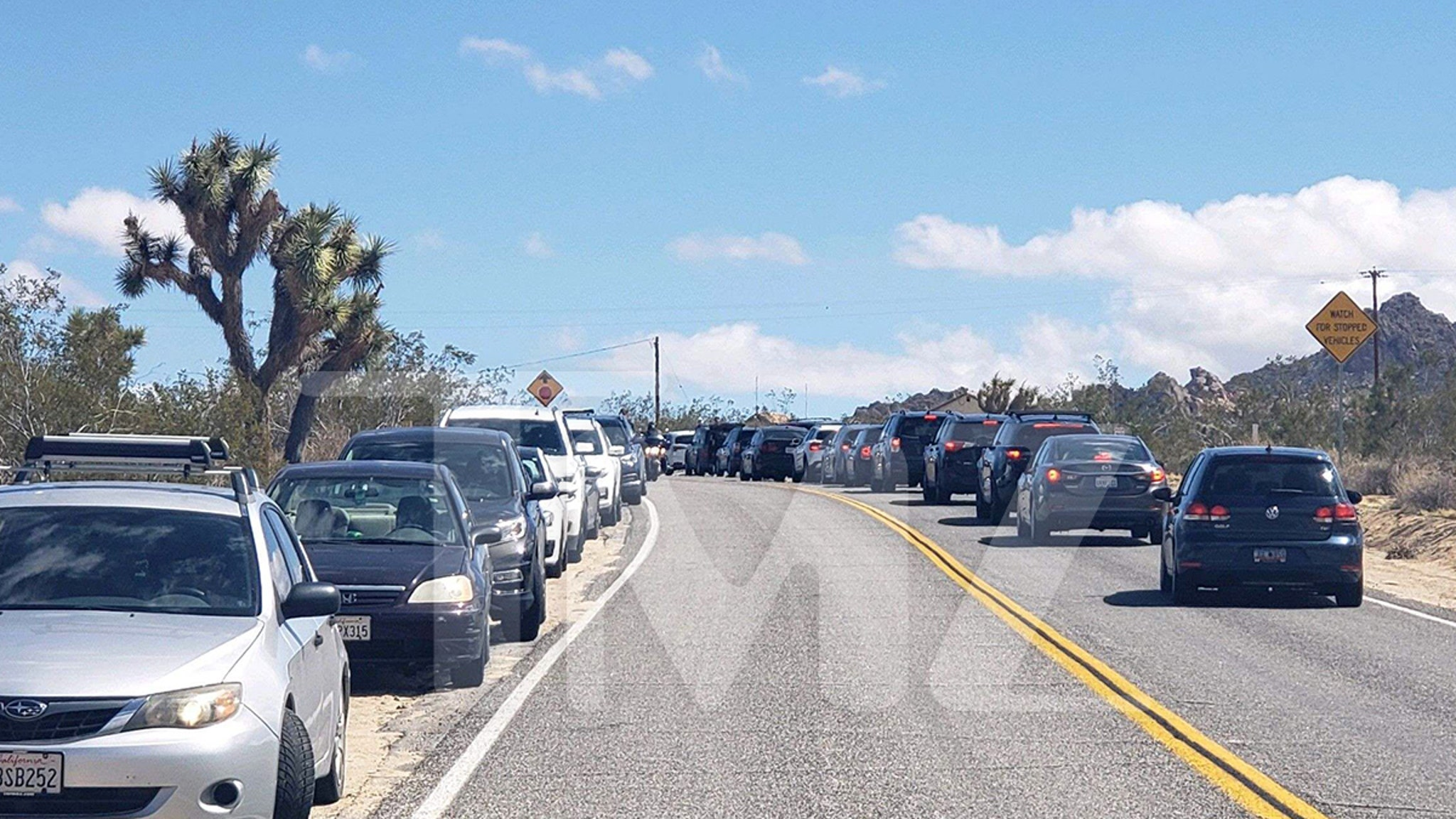 Joshua Tree Park Besieged with Out-of-Towners, Local Neighbors Pissed