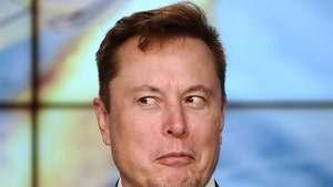 Elon Musk Lists Two Homes After Vowing To Sell Off Most Possessions