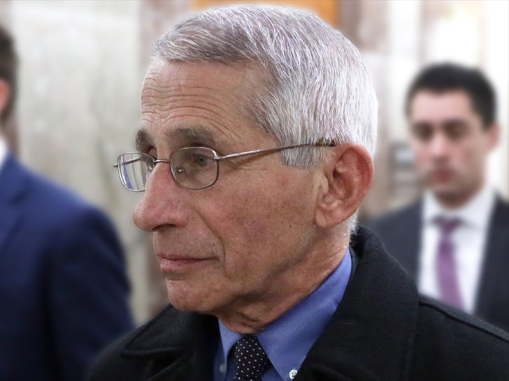 Fauci given security detail after threats