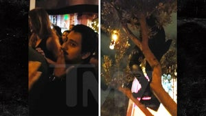 'Spider-Man' Star Tony Revolori Climbs a Tree at Comic-Con Party