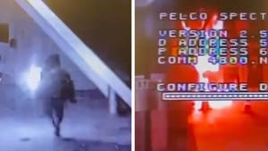 LAPD Station Hit with Molotov Cocktail on Video, Suspect Arrested