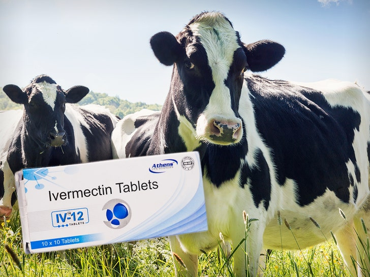 ivermectin cows