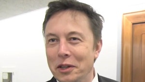 Elon Musk Wants to 'Free America Now'