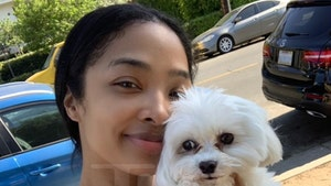 Ray J & Princess Love's Missing Dog Returned, Theft Suspected