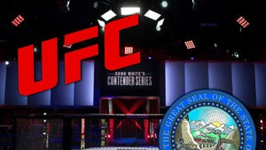 UFC Returning to Las Vegas, Nevada Commission Approves Fights