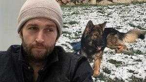 Jay Cutler's Reality Star Dog Goes Missing, QB Offers $1,000 Reward