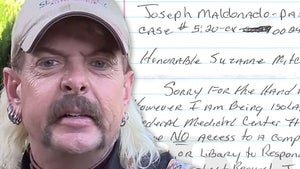 Joe Exotic Granted More Time in Civil Case Because He's in Isolation