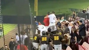 Pro Baseball Players Charge At Fans In Stands After Alleged Beer-Throwing Incident