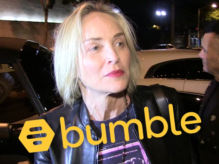 Sharon Stone Kicked Off Bumble For Alleged Fake Account - EpicNews