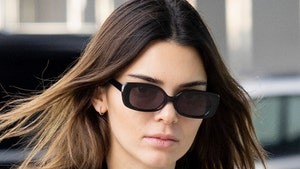 Kendall Jenner Agrees to Pay $90k Over Fyre Festival Promotion