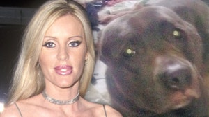 'Beverly Hills Cop' Actress Giving Pit Bull New Home After Mauling