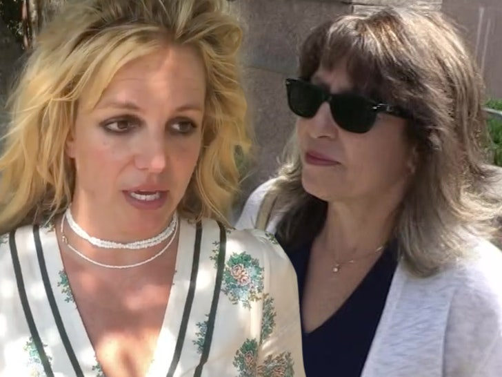 Britney Spears Wants Jodi Montgomery to Stay On When Conservatorship Ends.jpg