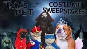 TMZ's Pet Costume Sweepstakes -- Enter To Win!
