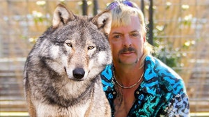 Joe Exotic Tried Selling Wolves in 2018 Before Activists Stepped In