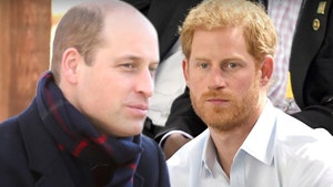 Prince William Worried His Talks with Harry Will Go Public, Lacks Trust