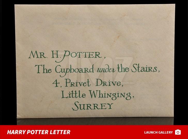 Harry Potter Auction Items