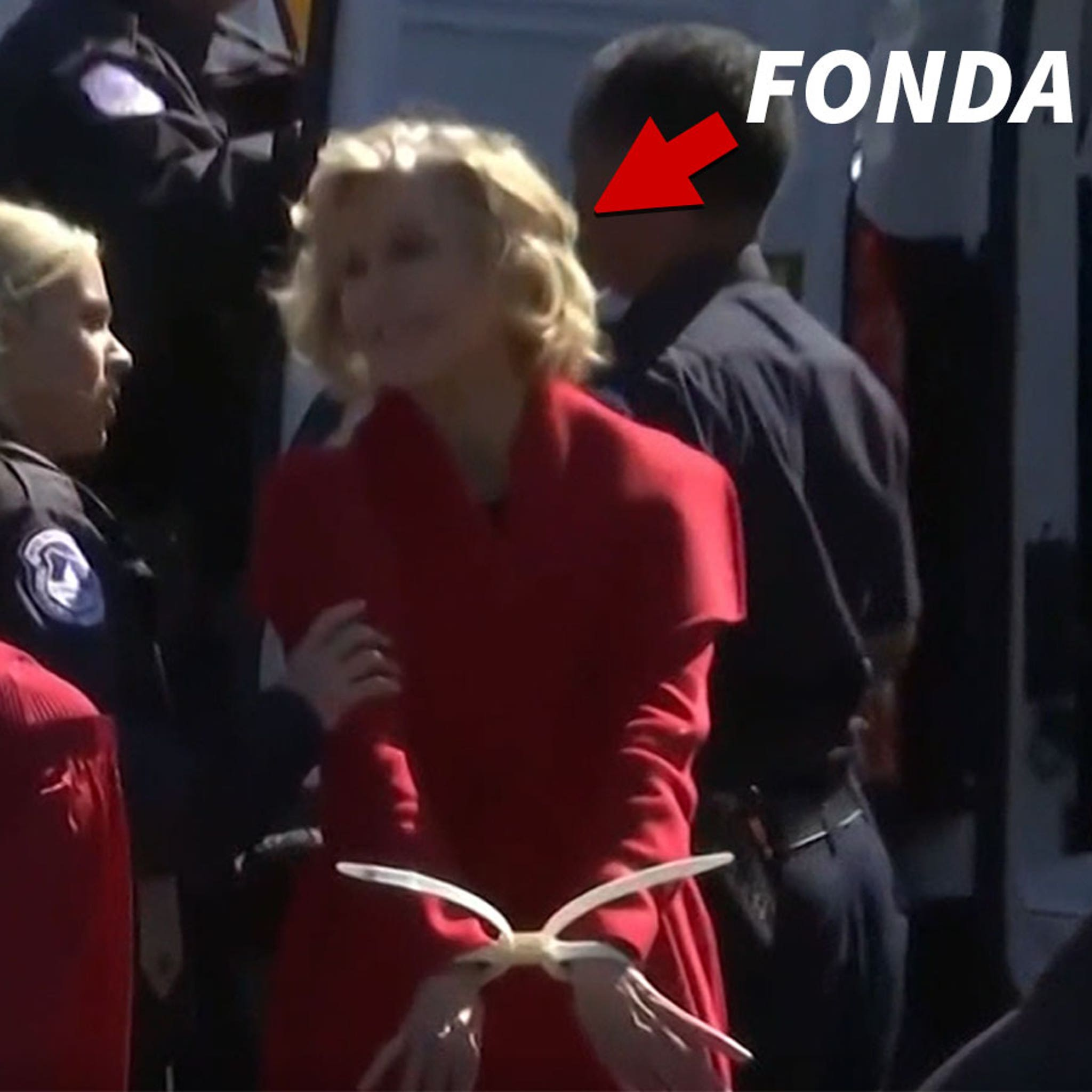 Jane Fonda Arrested Again in D.C. During Climate Change Protest