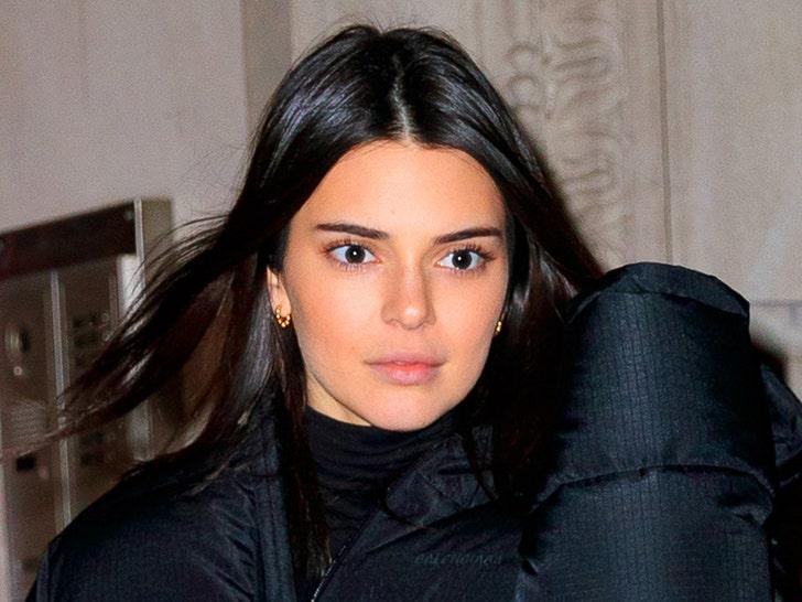 Kendall Jenner Has New Alleged Trespasser, Injures Himself Before Arrest.jpg