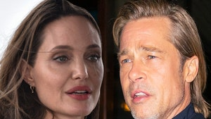 Angelina Jolie Wants Out of Wine Biz with Brad Pitt, Asks Judge to Approve Sale