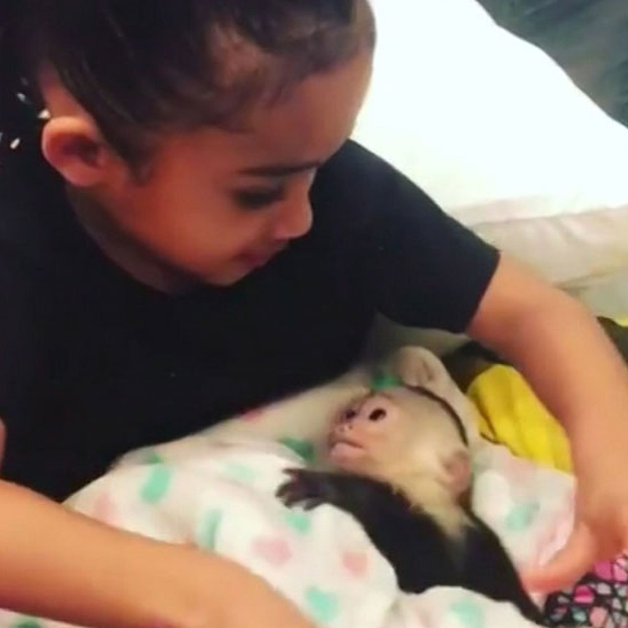 Chris Brown Buys His Daughter Royalty a Pet Monkey
