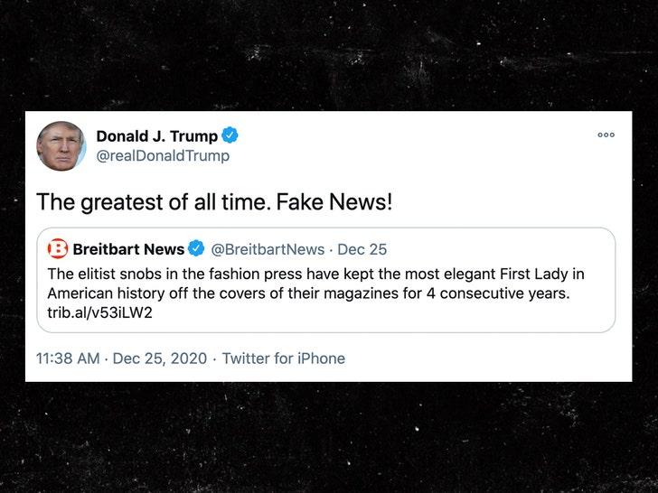 """Дональд Трамп говорит, что """"элитные снобы"""" в Fashion Biz не допустили Меланию с обложек журналов"""