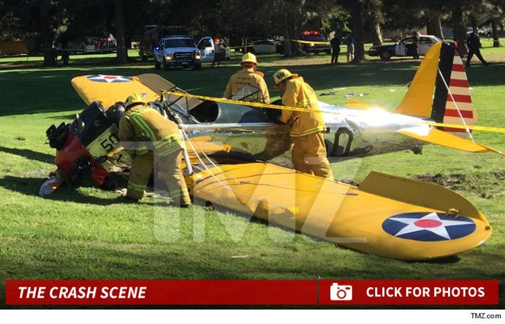 Harrison Ford -- The Plane Crash Photos