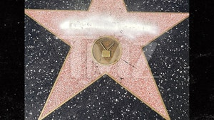 Donald Trump's Hollywood Star Vandalized with Graffiti