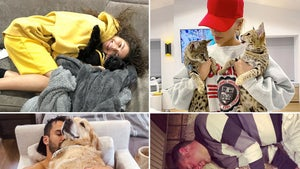 Celebs Cuddling Furry Friends ... Pawesome!