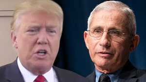 Trump Calls Dr. Fauci an 'Idiot' After Fauci's '60 Minutes' Interview