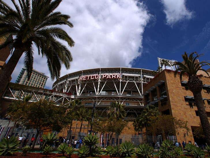 Woman, Toddler Fall to Their Deaths at Petco Park Ahead of Padres Game.jpg
