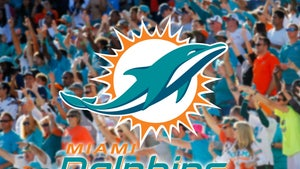 Miami Dolphins Get 'Full Capacity' Approval from Gov. for 65,000 Seat Stadium