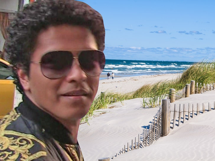 Bruno Mars to Perform at Swanky Cape Cod Wedding for Motorola CEO's Son.jpg