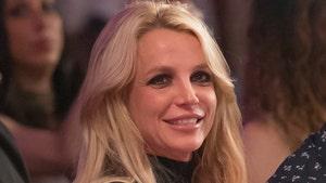 Britney Spears Conservatorship Wins Court Battle In Free Britney Movement