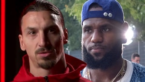Zlatan Ibrahimovic Says LeBron Should Stay Out Of Politics, 'Do What You're Good At'
