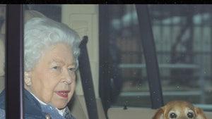 Queen Elizabeth's Dog, Vulcan, Dies
