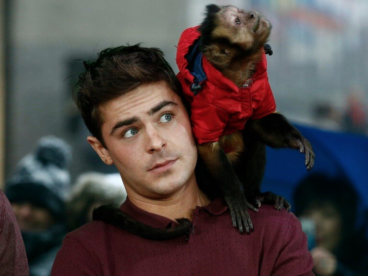 Famous People With Primates
