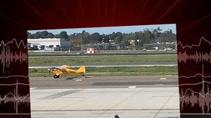 Harrison Ford, 'I'm the Schmuck Who Landed on the Taxiway' (AUDIO)